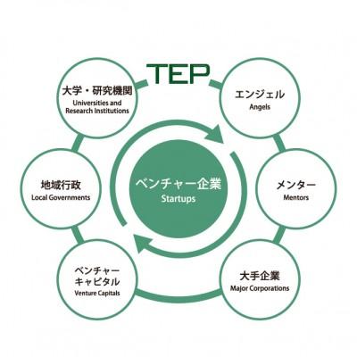 エコシステム図